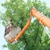 Under Price Tree Care and Landscaping Services