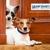 Guardian Pet Watch, LLC