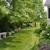 Basler Nursery & Tree Farm Inc