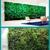 Green Living Wall Inc.