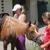 Rising Star Equestrian Miami