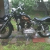 Harley Davidson Sales - CLOSED