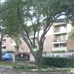 Avondale Parc Apts