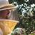 Burford & Sons Beekeeping
