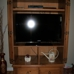 Consigned Home Furnishings