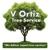 V Ortiz Tree Service