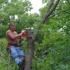Green Mountaineers Tree Service
