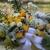 Moss & Magnolias Flowers