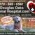 Douglas Oaks Animal Hospital