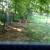Apex Stony Brook Kennel