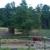 Old Oaks Equestrian