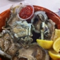 Rustic Inn Crabhouse - Fort Lauderdale, FL. Oyster