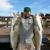 Capt Brad Daytona Beach Fishing Charter