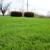 Caliber Lawn Care