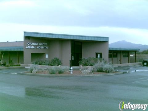 Orange Grove Animal Hospital Tucson Az 85741