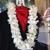 Corona Rose Flower & Gifts