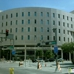 Florida State Courts-Circuit & County