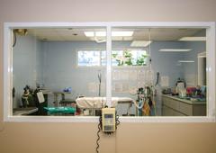 Dixie Animal Hospital - Miami, FL