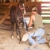 Whaley's Equine Services