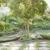 Pro Turf Landscape Management