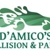 D'Amico Collision & Paint
