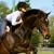 Saxton Equestrian - CLOSED