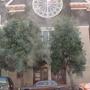 Iglesia Presbiteriana De La Mision