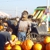 Pa's Pumpkin Patch - CLOSED temporarily