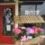 Bookshelf Florist & Gifts