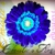 Christies Flowers & Design