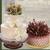 Alpha Delights European Bakery & Cafe