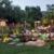 San Diego Ponds & Gardens