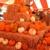 Pasadena Pumpkin Patch - CLOSED temporarily