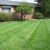Quality Lawn and Landscapes