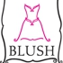Blush Bridal Boutique - CLOSED