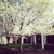 Holiday Inn SYRACUSE-LIVERPOOL-EXIT 37