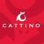 Cattino Cat Scratchers & Cat Toys