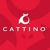 Cattino LLC Cat Scratchers & Cat Toys