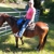Sandy's Horse Leasing
