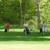 Rock Pile Golf