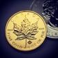 Blue Moon Coins