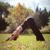 Beyond Center for Yoga