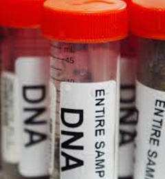 Discounted Local DNA Paternity Lab, LLC.