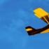 The Flying Wienie