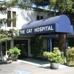 Cat Hospital The
