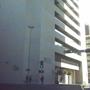 Braubach Robert P Law Offices