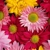 Kilby's Florist