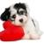 Lujans Pet Grooming & Supplies