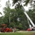 Bills Tree Service Inc