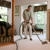 True Clean Carpet Care